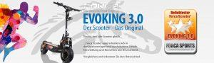 EVOKING 1 1960 580 300x89 - EVOKING-1-1960-580